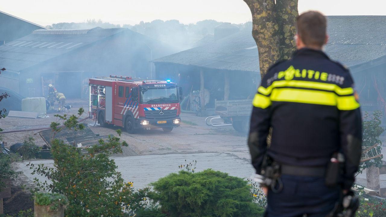 Brand in stal met zestig kalveren in Oijen