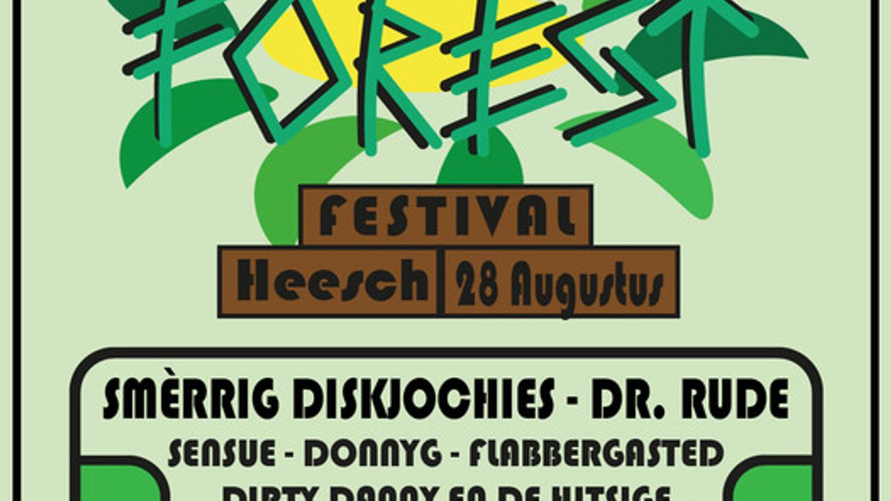Vier Heesche vrienden organiseren eigen festival: 'We willen wat voor de jeugd doen'