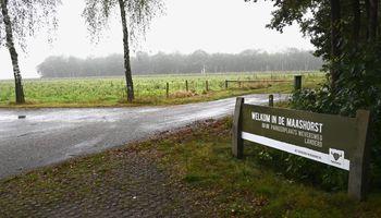 Meer ruimte voor wandelaars, fietsers en grazers: De Maashorst wordt groter